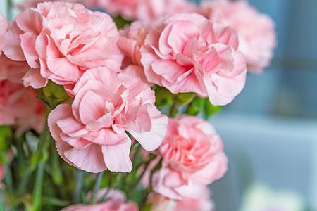 florist in yoakum tx floral arrangements flower delivery